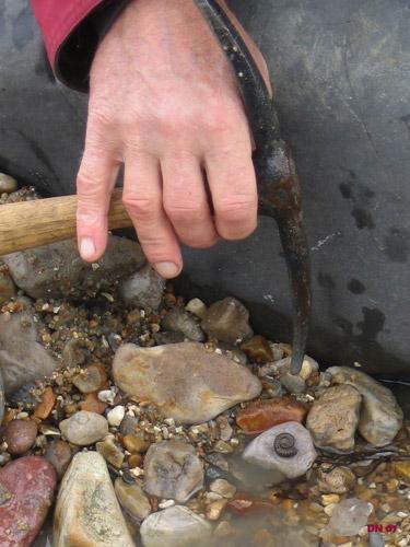 Ammonite, Seatown Dorset