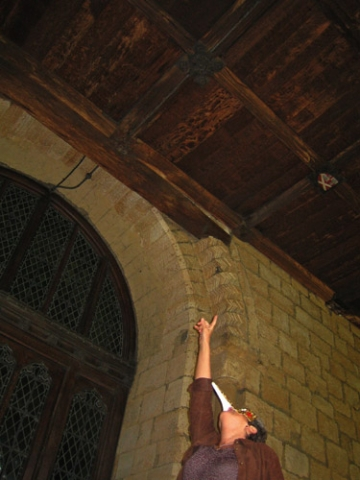 Bird Woman spots Green Man, Durham Cathedral Cloisters